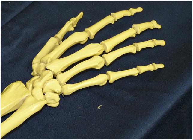 피부미용사 엄지손가락통증해소.jpg